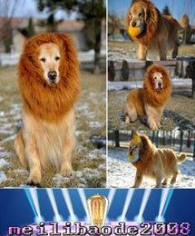 Wholesale Lion Wigs Dogs - 2017 NEW Lovely Large Dogs Halloween Pet Apparel Cat Fancy Dress Up Clothes Lion Mane Wig MYY