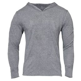 Wholesale All ingrosso Mens Gym Felpa con cappuccio a maniche lunghe Bodybuilding Felpa con cappuccio Uomo Tute sportive Canottiera Muscle Shirts Cotton Assassins Creed Gold Gym