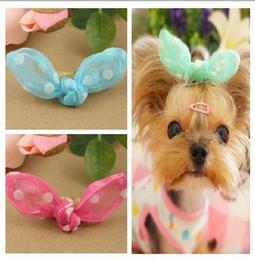 Kaninchenhaargarn online-Pet Grooming Haarschneider für Hunde Katzen Clips Hund Haarnadel Welle Punkt net Garn Kaninchen Ohrclip Hund Haarschleifen