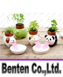 Wholesale Ceramic Pot Porcelain - Mini Self-Watering Animal Tougue Pot free shipping 2016 new fashion hot Porcelain Peropon Drinking Cute Animal Planter LLFA8999
