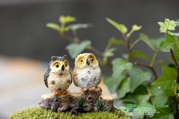Wholesale Bird Ornaments - Micro Mini Fairy Garden Miniatures Figurines Resin Owl Birds Animal Figure Toys Home Decoration Ornament Free Shipping wen4756