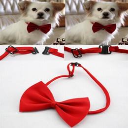 forniture di bowtie Sconti Spedizione gratuita 500pcs / lot Pet Neck Tie Dog Bow Tie Bowtie Cat Tie Pet Grooming Supplies