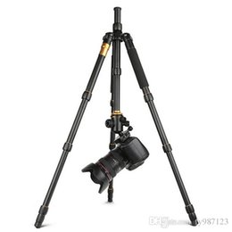 Wholesale Camera Tripod Bearings - New Q666 Pro QZSD-02 Professional Photographic Portable Tripod & Monopod Set For Digital SLR Camera Only 35cm Load Bearing 15Kg