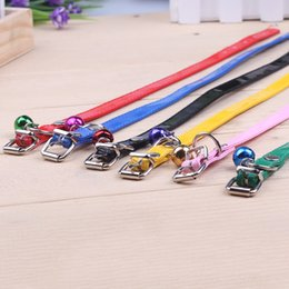 Wholesale Leather Belt Dog Collar - Wholesale-6 kinds of color's dog and cat traction rope traction rope necklace pet dog collar belt chain collar can be adjusted small