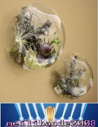 современные подставки для растений Скидка Air Plant Wall Glass Terrarium, настенный пузырьковый террариум, настенные плантаторы, аквариум с боевой рыбой для декора стен, предметы интерьера Dia10 / 12 / 15cm MYY
