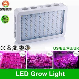 Wholesale Promotion sale Best led grow lights W W W LED Grow plant Light with band Full Spectrum for Hydroponic Systems
