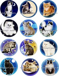 Wholesale Characters Blue Cat - Free shipping HOT cat moon Snap button Jewelry Charm Popper for Snap Jewelry good quality 12pcs   lot Gl261 jewelry making DIY