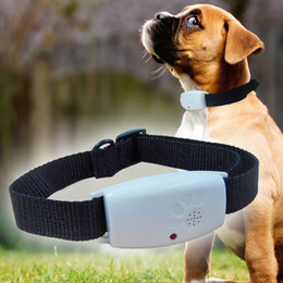 Wholesale Dog Cats Collars - Ultrasonic Pet Dog Cat collar Pest Repeller Repels Mosquitos Spiders Bed bugs