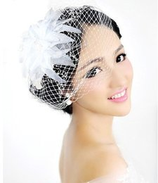 Wholesale Netted Flower Hair Clips - Women Vintage Flower Feather Mesh Net Fascinator Hair Clip Hat Party Wedding Bridal Hair Accessories