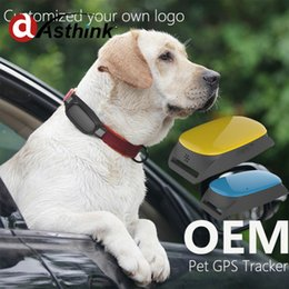 Wholesale Battery Iphon - waterproof long battery life Mini GPS Tracker dog, pet free app for iphon android cat tracking device