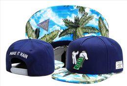 Wholesale Paris Snapback - Cayler & Sons snapback, coco tree paris love galaxy floral men & women's skateboard adjustable basketball hats