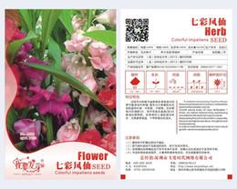 Wholesale Impatiens Flower - Flower Garden Balsam Seeds, Original Package 70pcs Mix color Garden bonsai Flower seeds, Easy Grow Impatiens 3bags per lot