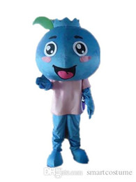 Wholesale Vision Costume - SX0725 Good vision and good Ventilation a blueberry mascot costume with pink shirt for adult to wear