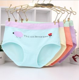 Wholesale Blue Lady Panty - Briefs Ladies 2016 New Underwear Cotton Panties Breathable Female Boxer Shorts Girl Women Hipster Pants Panty Lingerie Free Shipping