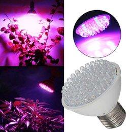 Wholesale Led Ufo 3w Light - Wholesale E27 220V 60LED 3W Red Blue Plant Grow Light Bulb Indoor Garden Hydroponic Lamp LEG_606