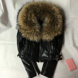 Wholesale Short Leather Jackets For Women - Wholesale-2016 fashion new style genuine leather jacket with big raccoon dog wool women's sheep skin real leather coat for female
