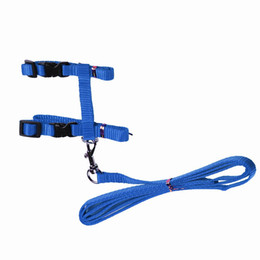 Wholesale Kitten Collars - Cat Harness And Leash Hot Sale 3 Colors Nylon Products For Animals Adjustable Pet Traction Harness Belt Cat Kitten Halter Collar