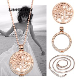 Wholesale Tree Necklace Holders - stainless steel jewelry wholesale 33mm diy coin holder chain complete set engraved Mi moneda fashion life tree locket necklace