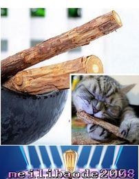 Wholesale Dental Toys - NEW Catnip Silvervine teeth Sticks Cats Dental Health Sticks Pets Catnip Products wood toys cats snacks cats favor newest MYY