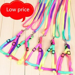 Wholesale Low Price Pet Products - Low price Pet supplies colorful dog leashes for Pet New Lovely walking harness pet products Dogs Leashes