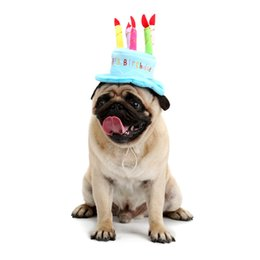 Wholesale Pet Dog Caps - Creative Dog Birthday Hat With Cake And Candles Design Pets Puppy Cap Cute Dog Hats Birthday Supplies Accessories Headwear DHL 0704120