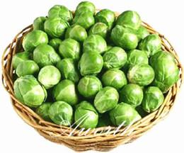 germogliare i semi Sconti Cavoli Cavolini di Bruxelles Varietà rara di verdure 20 semi Semi di ortaggi Heirloom di facile coltivazione Molto delizioso