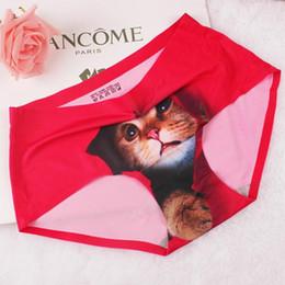 Wholesale Lingerie Fedex - Ladies Briefs 3D Cat Sexy Women Lingerie Panties 6 colors Nylon Blending Ultra-Thin Soft Pussycat Free Fedex TNT