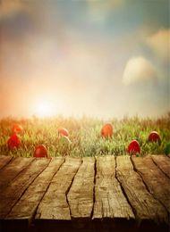 Pascua Fondos de fotos Vintage Panel de madera Suelo Borroso Luz Azul Cielo Nube Huevos rojos Hierba verde Bebé Recién nacido Fotografía Telón de fondo desde fabricantes