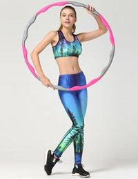 Wholesale Skye Leggings - Women Yuga Summer Style Aurora Skye 3D Print Fitness Sporting Suit Women Slim Gymnastics Clothes Bras Leggings sets Tracksuit