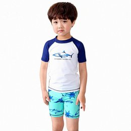 Wholesale Swimming Suit Boys - Three-pieces Boys Shark Swimsuit Short Sleeve Shorts Hat Split Suit Nylon Spandex Elastic High Quality Kids Swim