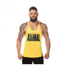 Wholesale Sexy Tracksuit Men - Wholesale- cotton fitness clothes bodybuilding tank top men Sleeveless fitness tops Casual golds vest brand tracksuits men m-xxl