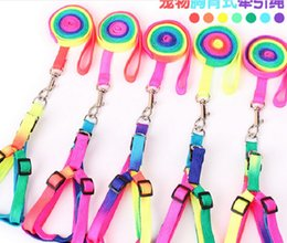 Wholesale Cheap Leashes For Dogs - D71 Colorful Nylon Dog Harness with leash lead Cheap Rainbow Small Puppy Dogs Cats Harness Full Set for Yorkshire Pet Accessories