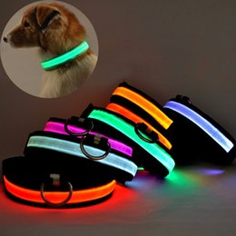 Wholesale Led Name Lights - LED Name Nylon Pet Dog Collar Luminous Night Safety Led Light-up Flashing Glow In The Dark For Puppy Cat Small Dogs Collars