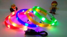 2019 colliers électroniques Le nouveau collier de chien de liste a mené les produits électroluminescents de la bague électronique de chien é-colliers colliers électroniques pas cher