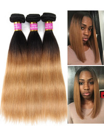 Wholesale Two Tone Hair Extensions Colors - Ombre Human Hair Extensions Virgin Brazilian Peruvian Malaysian Indian Straight Two Tone Brown Blonde 1B 27#Ombre Hair Bundles Free Shipping