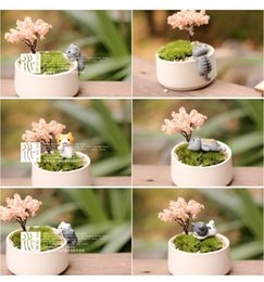 Wholesale Wholesale Collectible Figurines - figurine mini Retail 6designs cats girls fairy garden miniatures mini gnomes moss terrariums resin crafts figurines for garden decoration