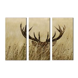 Wholesale Framed Deer Pictures - 3 Picture Canvas Paintings Wall Art Deer in the Grass Picture Printed On Canvas with Wooden Framed For Home Wall Decor as Gifts