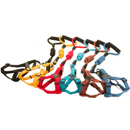 Wholesale Medium Duty - Dog Collar Leashes Harness Adjustable & Durable Leashes Set & Heavy Duty Nylon Dog Lead Collar for Dog, Perfect for Daily Training Walking