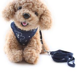 Wholesale Pictures Cartoon Dogs - armipet Cartoon Pictures Breathable Dog Harness Cloth Chest Strap Dogs Lead Chest Harnesses 6044018 Pet Leash Supplies S M L
