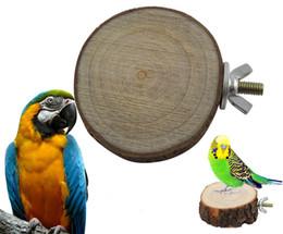 Wholesale Wooden Hanging Parrot - Round Wooden Squirrel Parrot Bird Perch Stand Platform Pet Bird Hanging Toy