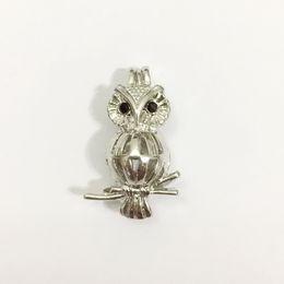 Wholesale Big Lockets - 18KGP Big Owl Pearl Gem Beads Locket Cage Pendant Mountings with Jewel Eyes Charm Jewelry