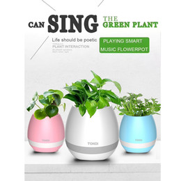 Wholesale Roses Light Bulbs - TOKQI bluetooth Smart Music Flower pots intelligent real plant touch play flowerpot colorful light long time play bass speaker Night light