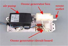 Wholesale Car Air Purifier Ozone Generator - New Home Health Ozone Generator Fridge Food Fruit Vegetables Wardrobe Car O3 Ionizer Disinfect Sterilizer Fresh Air Purifier