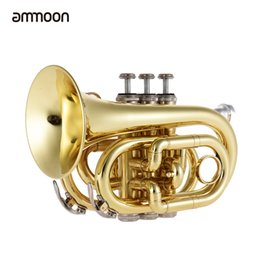 Wholesale trumpet cleaning - Wholesale- ammoon Mini Pocket Trumpet Bb Flat Brass Wind Instrument with Mouthpiece Gloves Cleaning Cloth Carrying Case