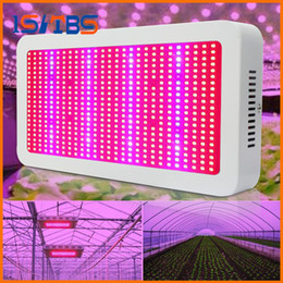 Wholesale Led Grow Light Flowering - Full Spectrum Grow Light Kits 600W Led Grow Lights Flowering Plant and Hydroponics System Led Plant Lamps AC 85-265V