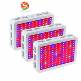 Wholesale Full Spectrum Grow Lights - 1000w led grow light Recommeded High Cost-effective Double Chips full spectrum led grow lights for Hydroponic Systems
