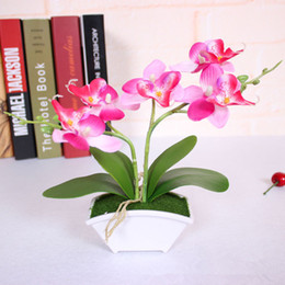Wholesale Small Leaves Plants - small artificial butterfly orchid flower set with real touch leaves artificial plants overall floral for wedding