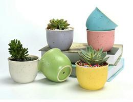 Wholesale Ceramic Vase Free Shipping - Free Shipping 1PCS Gardening Mini Ceramic Flower Pot Vase Circular Bonsai Planter Nursery Seedling Pot Garden Supplies&Pots