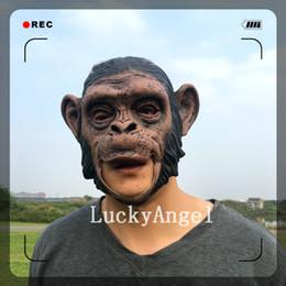 Wholesale Orangutan Halloween - New 2017 Wholesale Adult Animal Costume Latex Orangutan Monkey Ape Baboon Head Mask for Halloween Maquerade Carnival Party Free Shipping