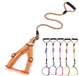 Wholesale Cheap Collars For Dogs - Classic Cheap Dog Pet Leash&Collar Good Quality Fashion Dog Lead Rope Training Leash For Small Large Pets 5 Color 4 Size 10PCS LOT